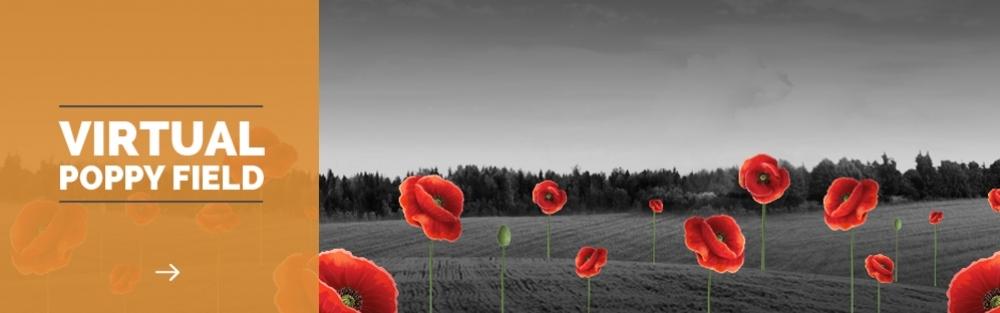 Virtual Poppy Field